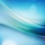 ВГермании предлагают включить «Майн кампф» вшкольную программу
