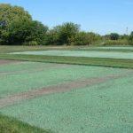 Технология гидропосева и преимущества ее использования